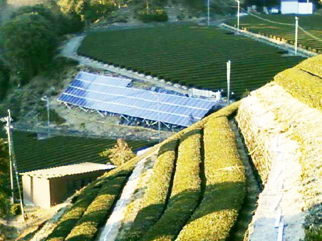 太陽光発電 防草シート活用事例
